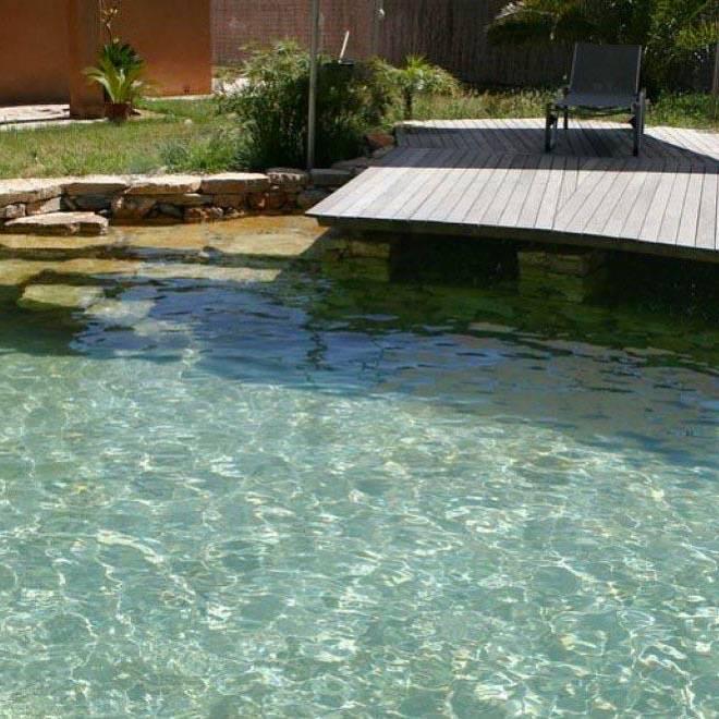 combien coute une piscine naturelle