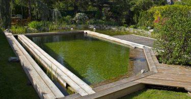piscine naturelle prix