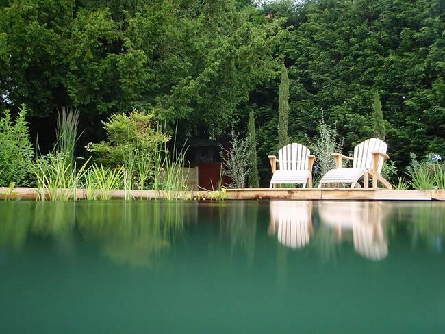 prix piscine naturelle